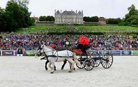 m-14-35-d6605-Details-Chateau-Haras-National-du-Pin-Demonstration-Cadre-Noir
