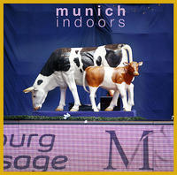 14-41-Muenchen (j+m)